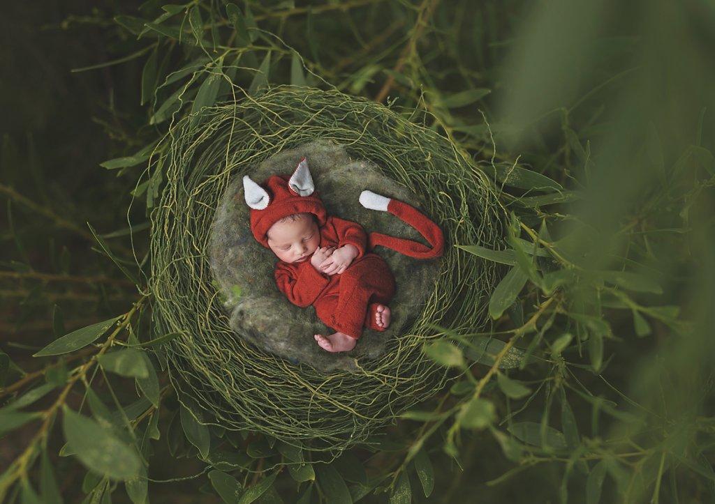 Newborn-0266.jpg