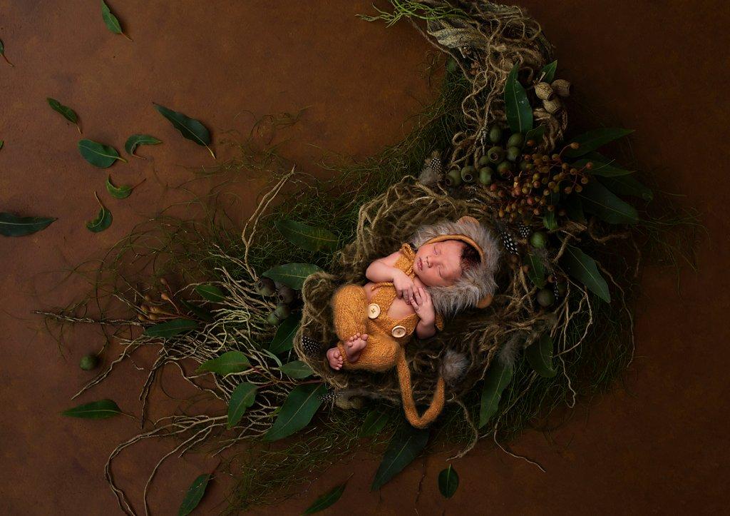 Newborn-0327.jpg