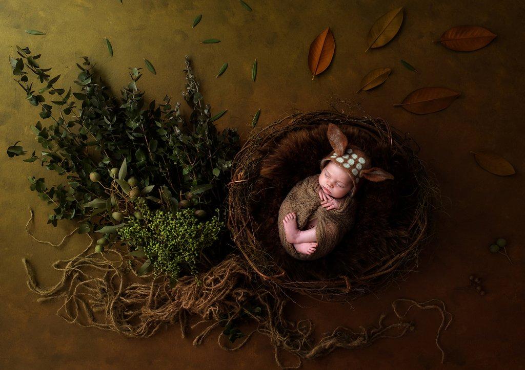 Newborn-0414.jpg